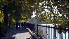 """Voici """"le Rservoir Jacqueline Kennedy Onassis"""" autour duquel les joggeurs, sur le Shuman running  track, enchanent des boucles de 2,5km. Dustin Hoffman s'entrainait ici dans Marathon Man (Barbara DALMAZZO-TEMPEL) Tags: nyc centralpark manhattan jacquelinekennedyonassisreservoir"""
