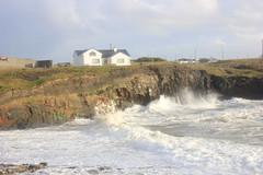 IMG_8366 (DaveGifford) Tags: ireland spanishpoint wildatlanticway