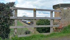 67029 at Barrow on Trent (robmcrorie) Tags: st birmingham international trent pancras barrow dbs directors 67029