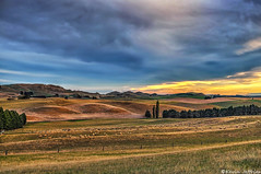 Serpentine valley (Kevin_Jeffries) Tags: light sunset newzealand sky cloud mountain art nature beautiful beauty field animal skyline architecture clouds rural wonderful landscape interestingness interesting sheep artistic gorgeous awesome farming canterbury hills pasture stunning mostinteresting fields fabulous awe magical breathtaking magnificent vast nikond90 serpentinevalley kevinjeffries