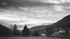 B&W-00632 (alessandro.polla) Tags: bridge blackandwhite bw italy mountains ice nature water river landscape woods iced woodbridge tentino