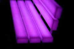 Lumiere London (spencerrushton) Tags: uk winter light colour macro london nature night canon bench outdoors model purple walk seat lumiere spencer londoncity manfrotto londonnight 2016 londonuk londontown rushton canonl 24105mm lightbench manfrottotripod canon24105mmlf4 lumierelondon spencerrushton 760d canon760d