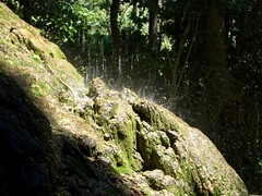 The power of water (hector.terrer) Tags: musgo verde agua cascada