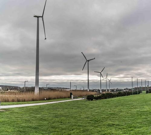 Wind Powered Public Park In Clongriffin Dublin [Father Collins Park]-111004