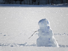 22 January 2016 (keepps) Tags: winter snow schweiz switzerland snowman suisse fribourg sneeuwman schneemann montbovon bonhommedeneige 365photos