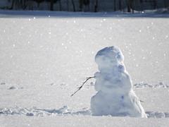 22 January 2016 (keepps) Tags: winter snow schweiz switzerland snowman suisse fribourg sneeuwman schneemann montbovon bonhommedeneige 365photos