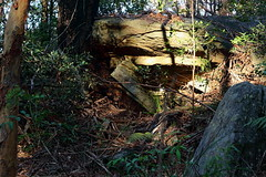 morning rocks 1 (alden0249) Tags: landscape rocks australianlandscape