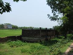IMG_7008.jpg (Kuruman) Tags: sylhet bangladesh srimangal