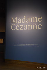 DSC_7100 (RachBox) Tags: nyc newyork museum metropolitanmuseumofart