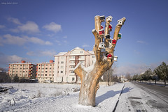 Hotel Color Dreams (oskaybatur) Tags: morning winter colors turkey pentax trkiye bluesky february bolu 2016 turkei teoman sigma1770 justpentax pentaxart pentaxk3 oskaybatur