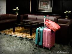 Luggage (simbiosc) Tags: travel hotel trolley luggage maleta recepcin simbiosc simbiosctv