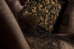 DSC_9809 (FlamingCity) Tags: hairy sexy beard facialhair sexyman hairychest