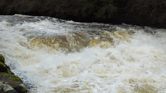 River Clyde at New Lanark 01 (byronv2) Tags: winter history nature water rural river landscape scotland riverclyde clyde countryside waterfall unescoworldheritagesite unesco worldheritagesite robertowen clydeside clydevalley rnbclyde