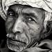 Old Rajasthani man, India
