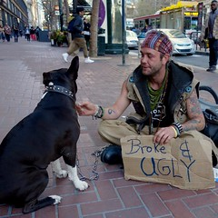 cosmetically challenged (vhines200) Tags: sanfrancisco dog sign homeless 88 panhandler 2016