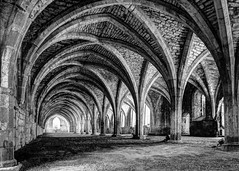 Fountains Abbey Cloister (Bashir Towers) Tags: travel water monochrome abbey gardens out blackwhite arch yorkshire days monks cloister fountainsabbey nationaltrust ripon studley nikond610