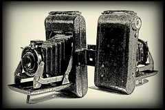 _MG_0016 Kodak Vigilant Juniors Six-20 (oldimageshoppe) Tags: blackandwhite watercolor posterized kodakvigilantjuniorsix20 prizedpossession foldingcameras drybursh
