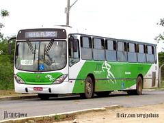 Viao Cidade Verde (BA) 1505 (Jos Franca SN) Tags: bus mercedes mercedesbenz autobus onibus marcopolo buss viale autocarro omnibusse