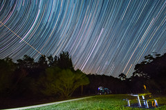 Trail gazing (nightscapades) Tags: longexposure beach stars coast timelapse bush au sydney australia astrophotography sirius orion newsouthwales astronomy startrails nightscapes garie royalnationalpark gariebeach lilyvale