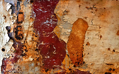 Clairaudience (Junkstock) Tags: red abstract color texture photography photo paint photos decay maine textures photographs photograph kennebunkport weathered abstraction peelingpaint distressed decayed craquelure