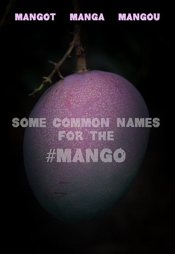 "Common Mango Names • <a style=""font-size:0.8em;"" href=""http://www.flickr.com/photos/139081453@N03/25646156751/"" target=""_blank"">View on Flickr</a>"