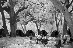 Lazy in Paradise (Uniquely Nidge) Tags: camping infrared botswana