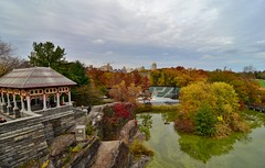 Central Park-Turtle Pond, 11.07.15 (gigi_nyc) Tags: nyc newyorkcity autumn centralpark autumnleaves autumncolors turtlepond