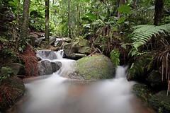 Tropical forrest (IV) (Aperture Laboratory) Tags: brazil brasil waterfall long exposure forrest filter tropical cachoeira brazili serradacantareira nd110