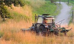 Mit dem Truck auf Tour (HORB-52) Tags: truck landwirtschaft tracktor lkw