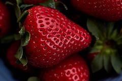 DSCF6864 (algimblett) Tags: wood light red food macro natural strawberries fresh