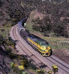 Green and gold (Bingley Hall) Tags: railroad train diesel transport engine rail railway australia anr an bulldog transportation adelaide locomotive passenger kodachrome southaustralia overland streamliner emd mka morrisonknudsen 645e clydeengineering australiannational sleepshill clp8 rpauclpclass railpage:class=61 railpage:loco=clp8 rpauclpclassclp8 railpage:livery=97