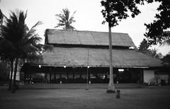 26520028 -  () Tags: bw bali film minolta     indonisia  banyuwangi  minoltaxe rokkor50mmf14