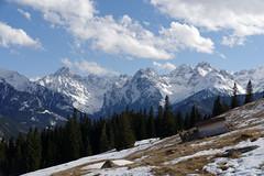Widok z Rusinowej Polany na Gerlach, Młynarza, Wysoką, Rysy