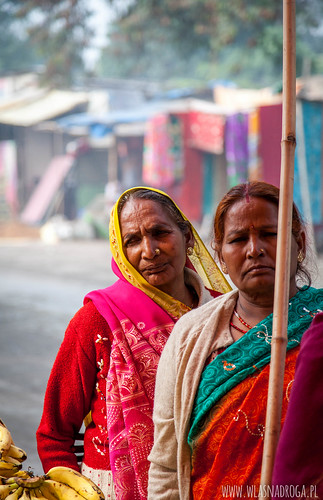 Targ w Kanpur