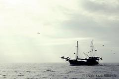 Palabras ahogadas (Sergio Fdez. Valverde) Tags: libertad barco tenerife oceano magia gigantes acantilados