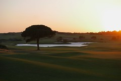 Donnafugata Golf resort at dusk (Nicolas Chaperon) Tags: italy golf lumix resort panasonic sicily donnafugata gx7