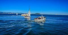 Boats on SF Bay - San Francisco CA (mbell1975) Tags: ocean sf sanfrancisco california ca sea usa water sailboat america boats bay boat us san francisco wasser unitedstates yacht cove calif cal american sail yatch