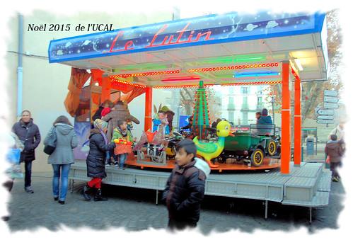 Manège & poneys (10)