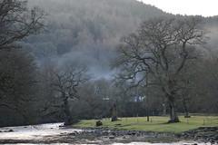DSC_0100 (Lord Edam) Tags: winter mist nature water grass wales river stones walk wildlife betwsycoed conwy afon llugwy