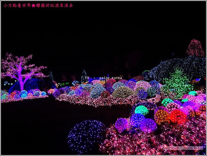 晨靜樹木園 五色星光庭園展 (49).JPG