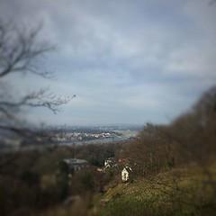 Tiltshift over Dresden (jenstoyou) Tags: river square dresden vineyard saxony wanderlust sachsen squareformat elbe weinberg tiltshift blaueswunder iphoneography tiltshiftgen instagramapp