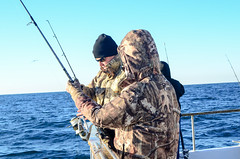 SportFishing_12.29.15-8 (Troop2 Riverside) Tags: youth fishing scouts adventures scouting bsa cleaningfish sportfishing deepseafishing charterboat oceanfishing danawharf scoutingoutdoors scoutsdostuff troop2riverside bsafishing fishingmeritbadge