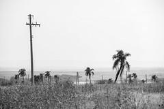 Veleiros-do-Piracicaba-9 (veleirosdopiracicaba2015) Tags: brasil casa sãopaulo chacara anhembi empreendimento veleirosdopiracicaba