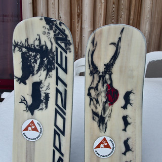 dh - de nouveaux skis