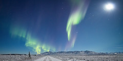 Northern lights, tundra night (frostnip907) Tags: pink blue sky moon snow mountains green alaska night landscape frost hoarfrost astrophotography aurora nightsky uncool wilderness tundra northernlights auroraborealis taiga auroras canon7d uncool2 uncool3 uncool4 uncool5 uncool6 uncool7 rokinon14mmf28