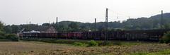 Goods train Herford Germany 21st August 2013 21-08-2013 15-57-20 (dennoir) Tags: train germany 21st august goods herford 2013 155734 21082013