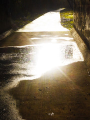 Puddle full of Sun (Alan FEO2) Tags: shadow sun reflection rain puddle concrete outdoor tunnel indoor shade shelter 35 2oef 116picturesin2016