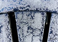 160118 fgsjN 160129  Ththi (13 pics ) (thethi: pls read the 1st comment) Tags: givre froid gel glace cristal objet jardin janvier namur wallonie belgique belgium setvosfavorites provincenamur albumjanvier ruby10 bestof2016 setwater setnamurcity faves75