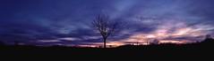 Sun sets - Dark rises (NigglsPhotography) Tags: blue light sunset shadow panorama black tree silhouette clouds dark licht sonnenuntergang wolken blau schatten baum schwarz dunkel