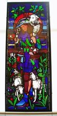 Good Shepherd (Aidan McRae Thomson) Tags: window museum birmingham artgallery stainedglass westmidlands burnejones bmag